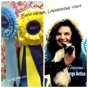 Teresina del Borgo Antico Best in Show female IV cat